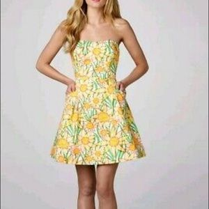 Lilly Pulitzer Wyatt Dress Size 4